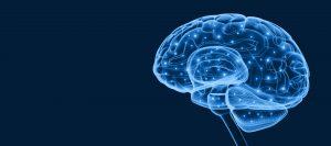 rehabilitación neurocognitiva